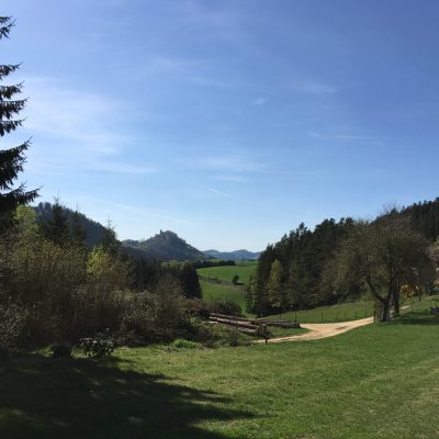 Moser Alm, GoWithTheFlo4